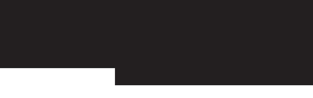 SLM-logo-copy